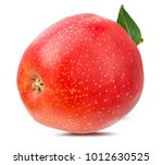 fresh red apple isolated on... | Shutterstock . vector #1012630525