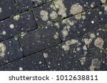 old gray brickwork abstract... | Shutterstock . vector #1012638811
