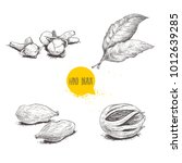 hand drawn sketch spices set.... | Shutterstock .eps vector #1012639285