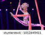 st. petersburg  russia  ...   Shutterstock . vector #1012645411