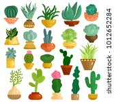 cacti and succulents in pots... | Shutterstock .eps vector #1012652284