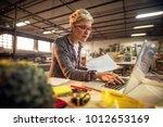 close up of focused short hair... | Shutterstock . vector #1012653169