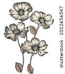 elegant floral vector... | Shutterstock .eps vector #1012656547