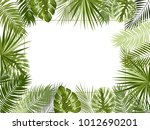 vector tropical jungle... | Shutterstock .eps vector #1012690201