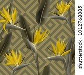 bird of paradise tropical... | Shutterstock .eps vector #1012768885