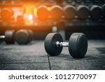 gym and dumbbell weight...   Shutterstock . vector #1012770097