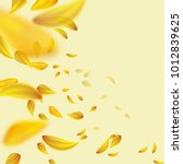 flying yellow petals.blurred... | Shutterstock .eps vector #1012839625