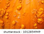 Small photo of Pumpkin rind as background and textures.