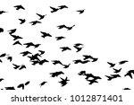 bohemian waxwing  bombycilla... | Shutterstock .eps vector #1012871401