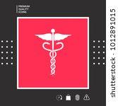 caduceus medical symbol | Shutterstock .eps vector #1012891015