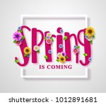 spring is coming vector banner... | Shutterstock .eps vector #1012891681