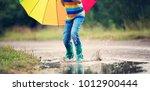 child walking in wellies in... | Shutterstock . vector #1012900444