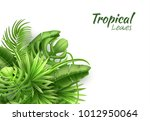 realistic tropical leaves... | Shutterstock .eps vector #1012950064