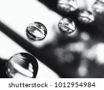 water drops in black and white... | Shutterstock . vector #1012954984