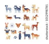 dog breeds. pixel art 80s style ... | Shutterstock .eps vector #1012998781