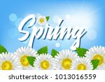 inscription spring against a... | Shutterstock .eps vector #1013016559