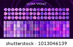 trendy ultra violet and rose... | Shutterstock .eps vector #1013046139