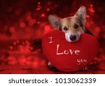 lovely loving dog with a red... | Shutterstock . vector #1013062339