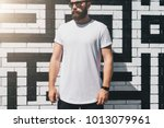 summer day. front view. young... | Shutterstock . vector #1013079961