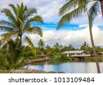 hawaii palm trees and sky... | Shutterstock . vector #1013109484