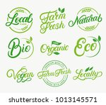 set of organic  local  farm... | Shutterstock . vector #1013145571