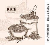 vector rice hand drawn sketch . ... | Shutterstock .eps vector #1013151871