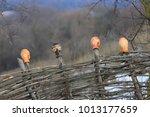 traditional ukrainian handmade... | Shutterstock . vector #1013177659