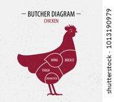 cut of chicken. poster butcher... | Shutterstock . vector #1013190979
