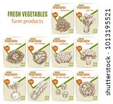 vegetables sketch price cards... | Shutterstock .eps vector #1013195521