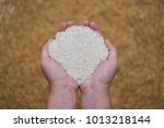 close up of grains of uncooked... | Shutterstock . vector #1013218144