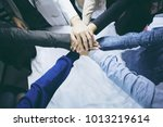 close up top view of group of... | Shutterstock . vector #1013219614