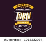 i didn't know i'd have to be... | Shutterstock .eps vector #1013232034