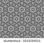 creative seamless geometric... | Shutterstock .eps vector #1013234521