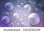 light purple vector background... | Shutterstock .eps vector #1013256109