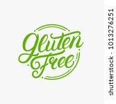gluten free hand written... | Shutterstock . vector #1013276251