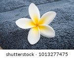 plumeria flower on towel close... | Shutterstock . vector #1013277475