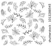 leafs pattern background   Shutterstock .eps vector #1013288545