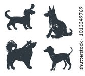black hand drawn isolated dogs... | Shutterstock .eps vector #1013349769