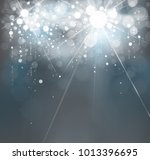 vector sparkle  lights... | Shutterstock .eps vector #1013396695