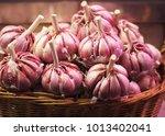 garlic. fresh garlic. red... | Shutterstock . vector #1013402041