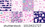 vector seamless pattern set... | Shutterstock .eps vector #1013421727
