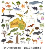 australia and oceania flora and ... | Shutterstock .eps vector #1013468869