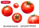 tomato set. detailed realistic... | Shutterstock . vector #1013475949