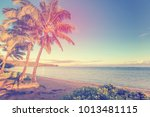 vintage processing of a...   Shutterstock . vector #1013481115