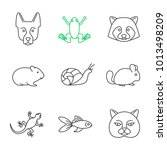 pets linear icons set. german... | Shutterstock .eps vector #1013498209