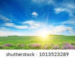 scenic landscape of green... | Shutterstock . vector #1013523289