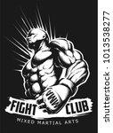 vector mma fighter   Shutterstock .eps vector #1013538277