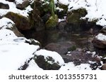spring water among the stones... | Shutterstock . vector #1013555731