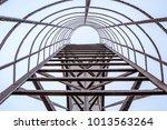 Black Metal Ladder Covered Wit...