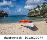 lagun beach  views around... | Shutterstock . vector #1013620279